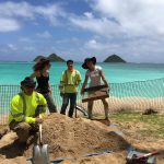 Excavating in Lanikai, O'ahu